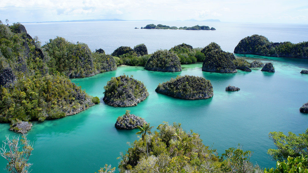 Diving Indonesia: The Stuff of Dreams for Divers